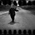 Teddy running free